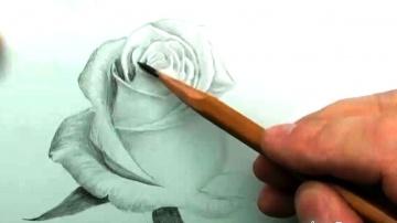 КАК нарисовать БЕЛУЮ РОЗУ карандашом