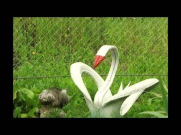 Как облагородить сад и дачу  Интересные идеи для Вас   Фото